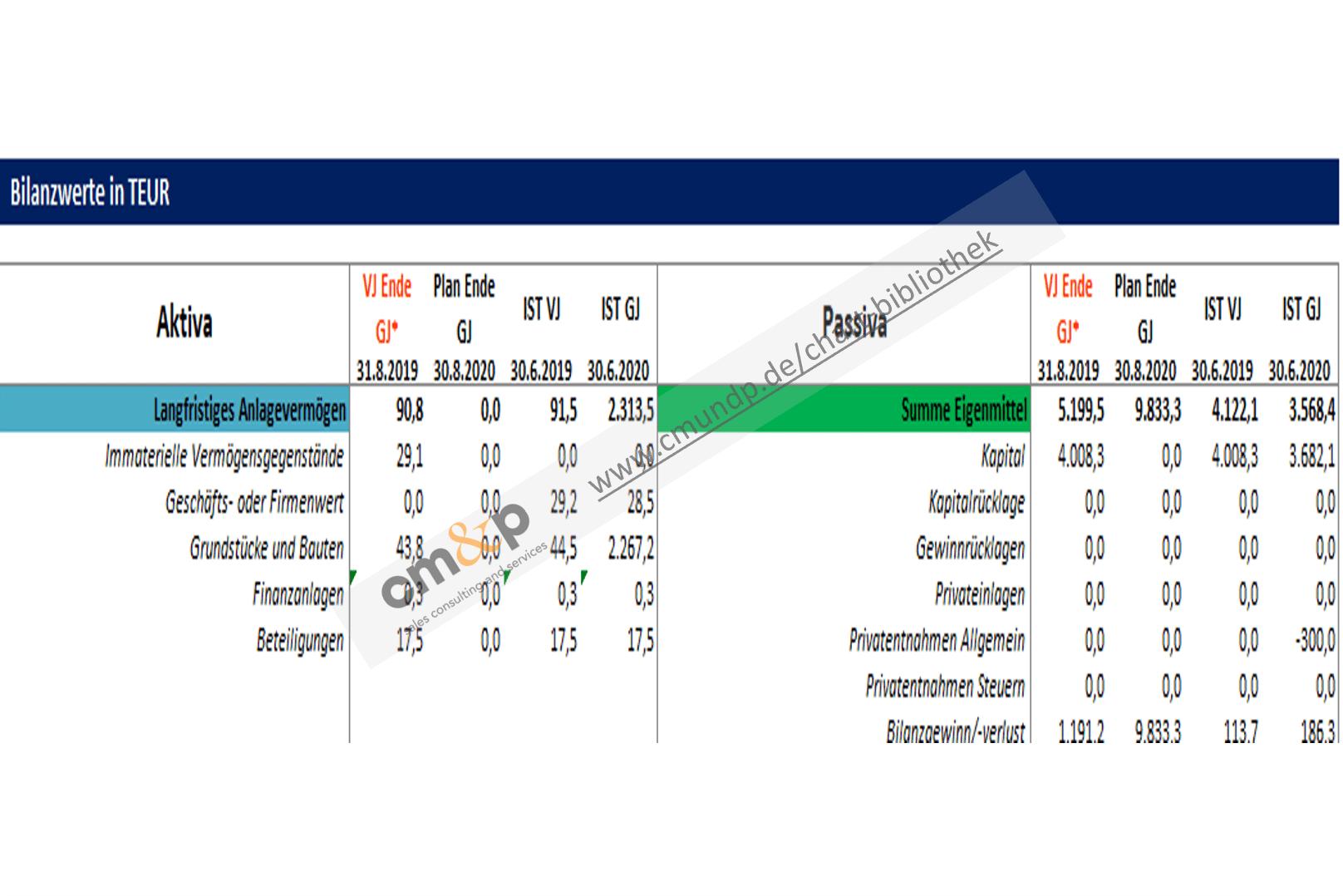 Darstellung der wichtigsten Bilanzwerte von Aktiva und Passiva in TEUR als Vorjahres- und Istwerte, sowie zum Geschäftsjahresende des Vor-und Planjahres