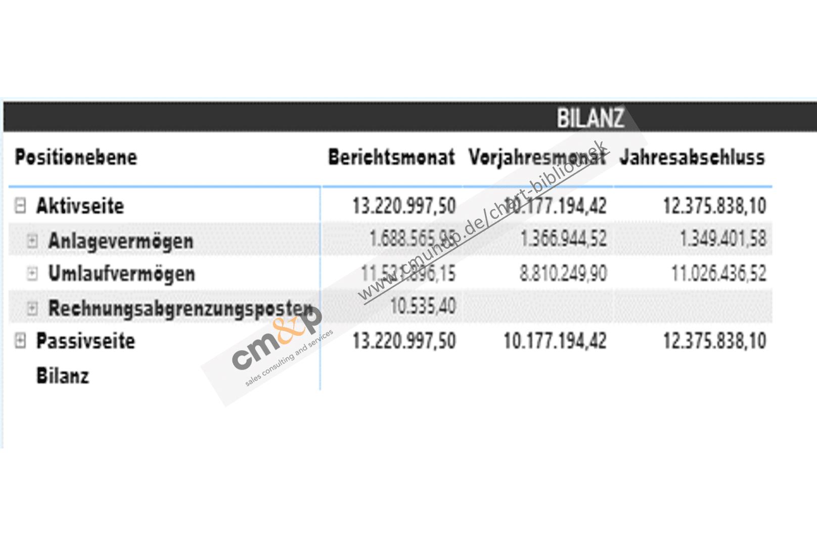 Tabellarische Darstellung der Bilanz als Monatswerte des Vorjahres und aktuellen Jahres, sowie zum Jahresabschluss, mit Aufklappfunktion bis auf Kontoebene (Zoom-In bzw. Drill-Down-Funktion).